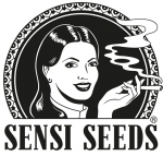 Sensi Seeds - Big Bud