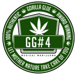 GG strains - Gorilla Glue #4