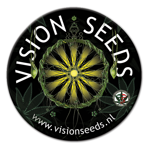 Vision Seeds - Cheese