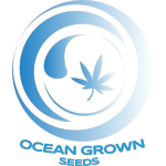 Ocean Grown Seeds - Ninja Fruit