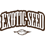 Exotic Seed - Spicy Bitch