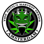 The Devils Harvest Seeds - Strawberry Sour Diesel
