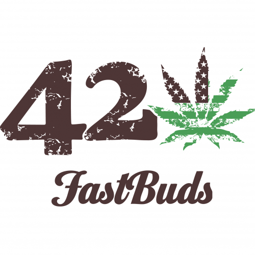 FastBuds - California snow