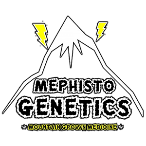 Mephisto Genetics - Alien vs. Triangle