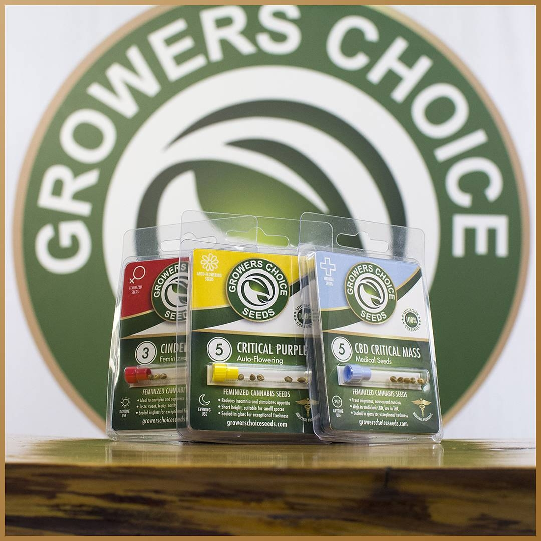 Growers Choice Seeds breeder  Seed bank info - GrowDiaries