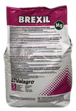 Brexil Mg