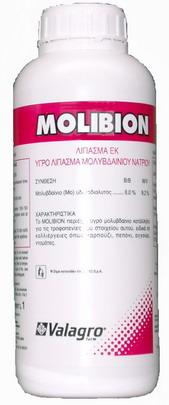 Molibion