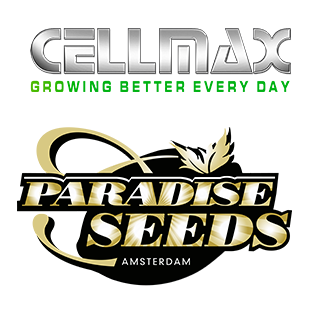 Cellmax & Paradise Seeds