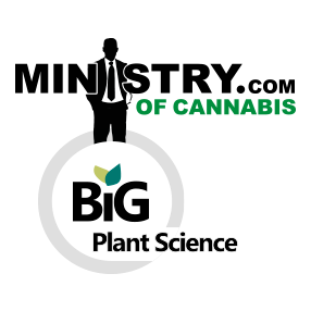 Ministry of Cannabis, Big Plant Science