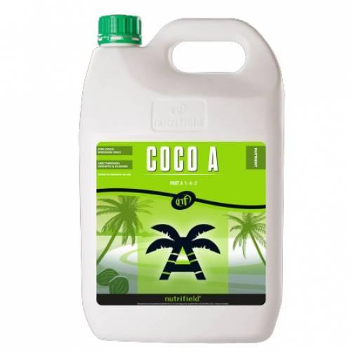 Coca A