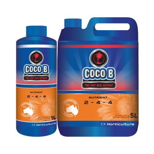Coco B