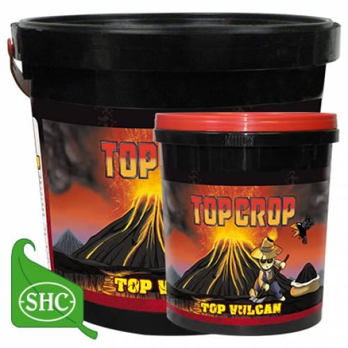 Top Vulcan