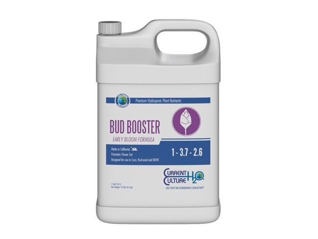 Current Culture H2O - Bud Booster Early