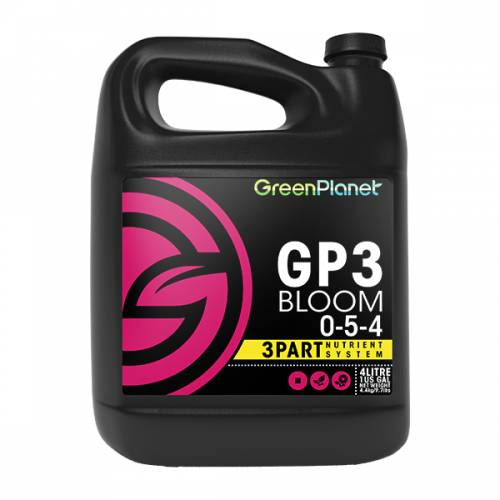 GP3 Bloom