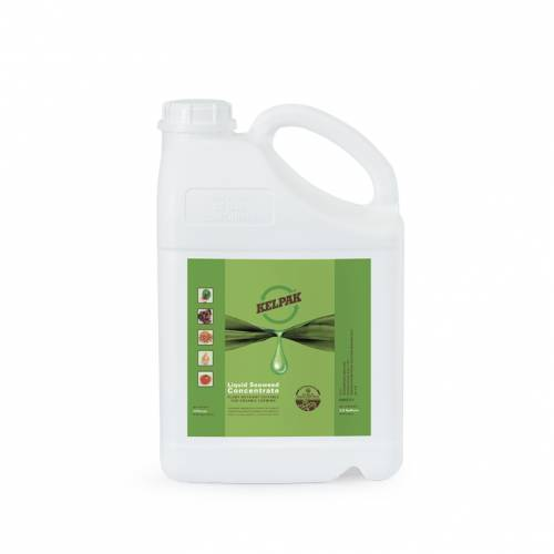 Liquid Seaweed Concentrate (USA)