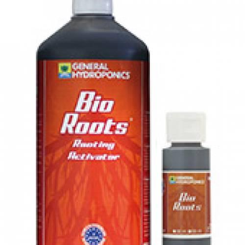 Bio Roots