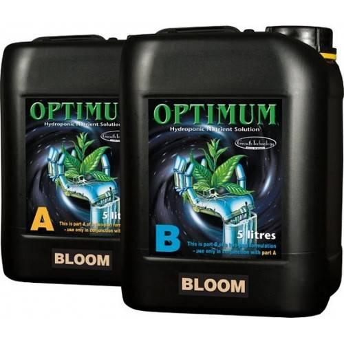 Optimum Bloom Part B