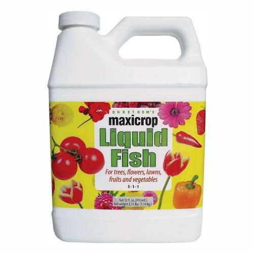 Liquid Fish