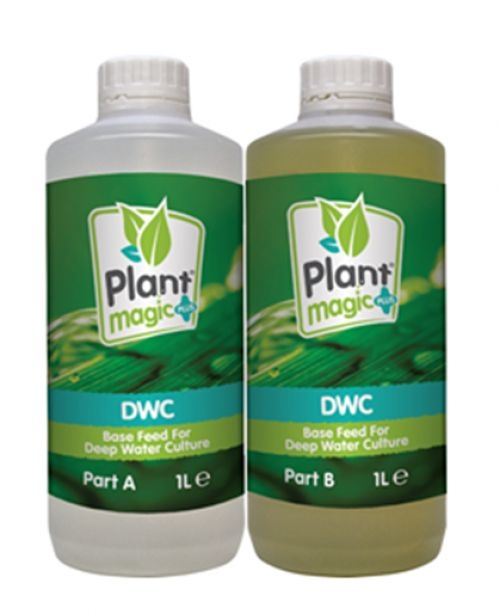 Plant Magic - DWC