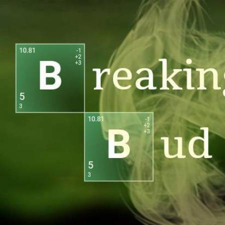 BreakingBud - Back on Grow Diaries