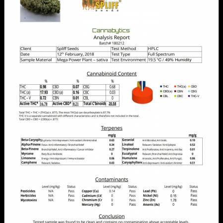 LAB RESULTS - Mega Power Plant