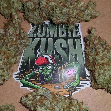 Greens Zombie