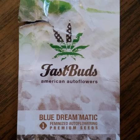 FastBuds Blue Dream'matic