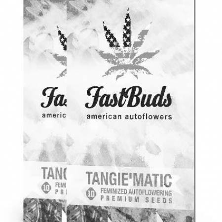 Tangie matic Auto