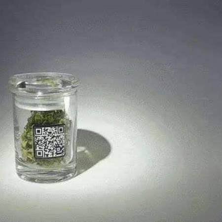 Kindbot Sour Diesel