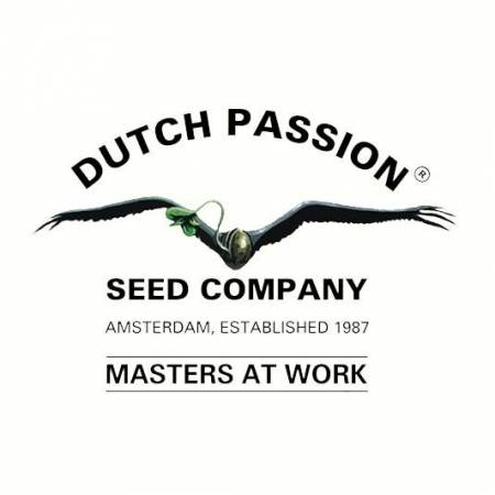 DutchPassion_Official