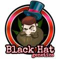 BlackHatGenetics