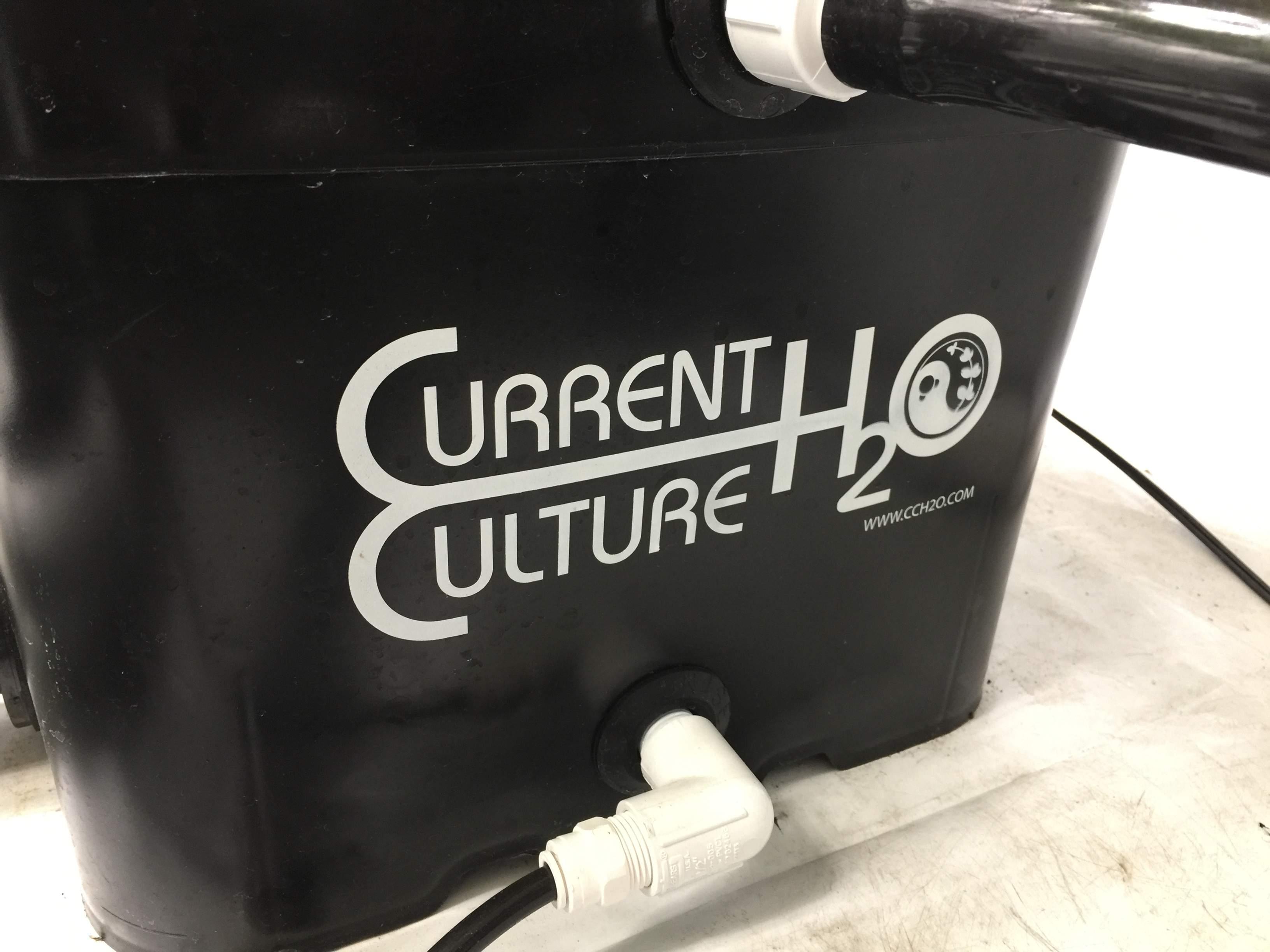 CurrentCulture420Grown