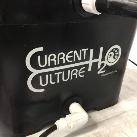 CurrentCulture420Grown
