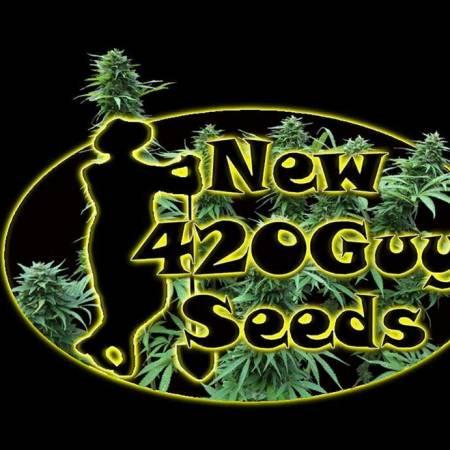 New420GuySeeds