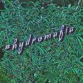 hydromafia